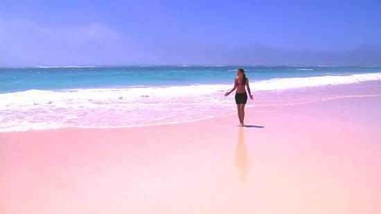 pink sands beach american soap supplies